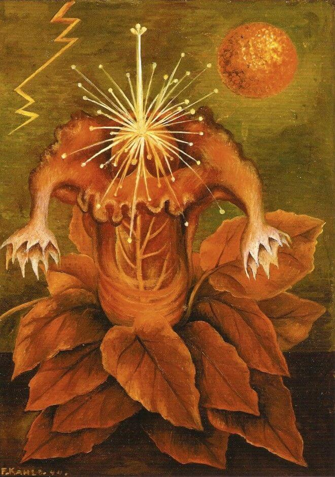 Flower of Life (Flame Flower), 1943 - by Frida Kahlo