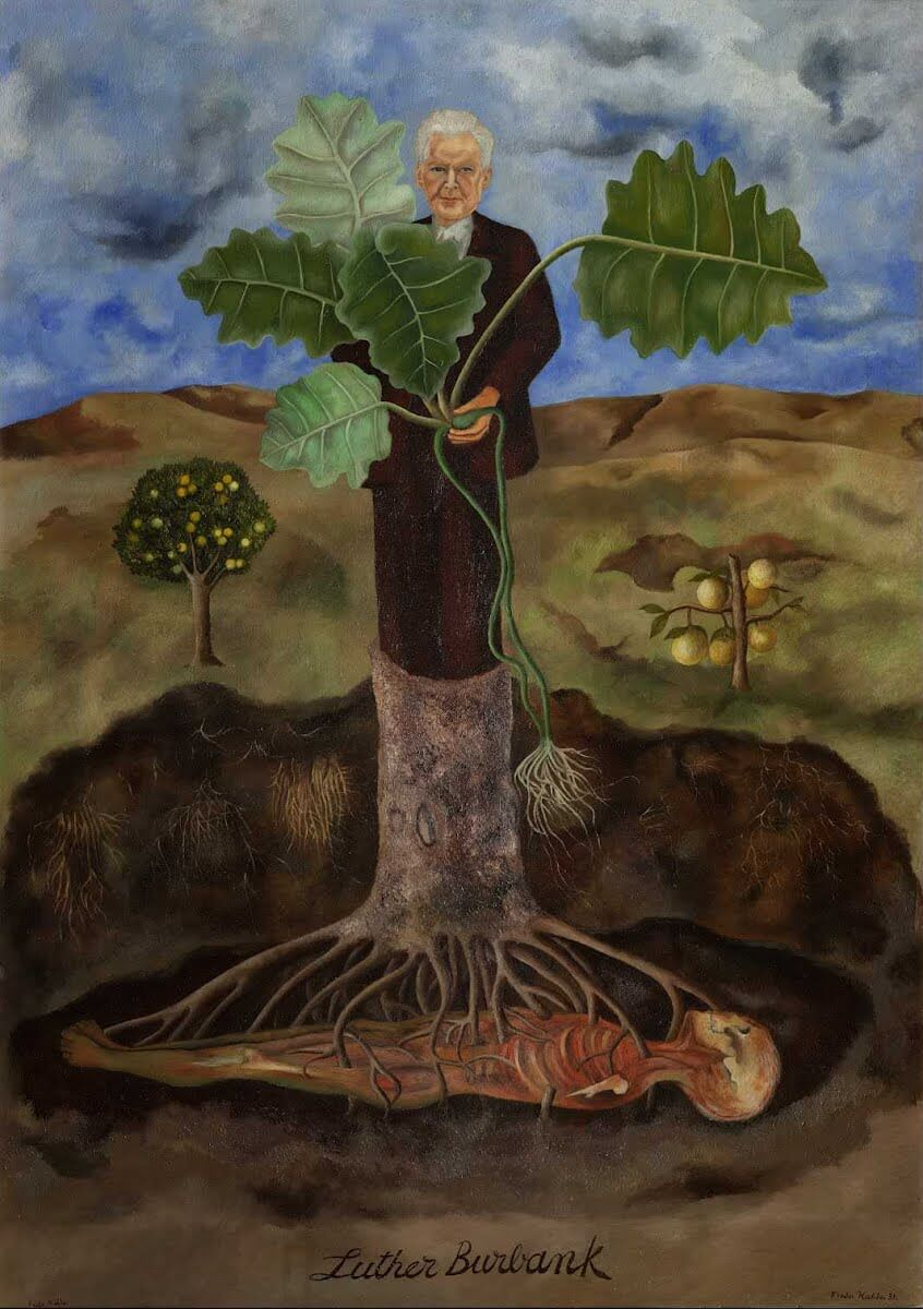 Portrait of Luther Burbank, 1931 - by Frida Kahlo
